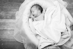 Child baby infant beautiful portrait black and white Stock Photography
