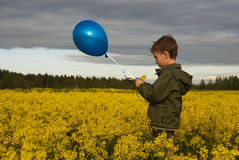 A child with balloon on field of flowers,  northern summer Royalty Free Stock Images