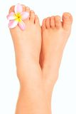 Child bare little feet with flower royalty free stock photography