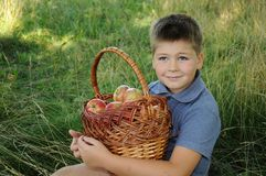 A child with a basket of apples Stock Photography