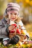 Child with basket of apples. Happy child with basket of red apples in autumn park. Healthy lifestyles concept royalty free stock image