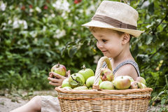 A child and a basket of apples Royalty Free Stock Photo