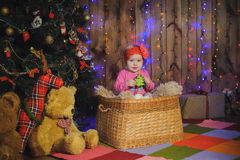 Child in a basket near New year tree Stock Images
