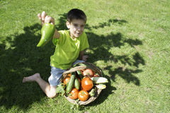 Child and basket with vegetables. Green meadow Stock Image