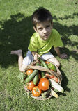 Child and basket with vegetables. Green meadow Royalty Free Stock Image