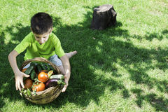 Child and basket with vegetables Stock Image