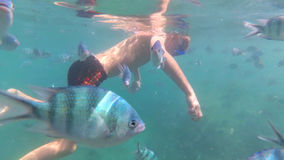 Child bathe in the sea with fish. Scuba Diving in Masks Stock Photo