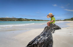 Child on beach in Puerto Rico royalty free stock photography