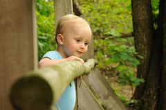 Child behind barrier Royalty Free Stock Photography