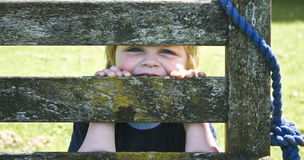 Child behind a bench. Young boy playing behind a wooden bench Stock Image