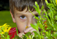 Child Behind a Plant Stock Photo