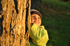 Child behind tree Stock Photo
