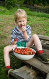 Child and berries Royalty Free Stock Image
