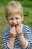 Child and berries Stock Images