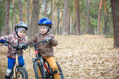 Child on a bicycle in the forest in early morning. Boy cycling o Stock Photo
