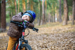 Child on a bicycle in the forest in early morning. Boy cycling o Stock Images