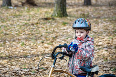 Child on a bicycle in the forest in early morning. Boy cycling o Royalty Free Stock Photos