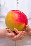 Child with a big apple Royalty Free Stock Image