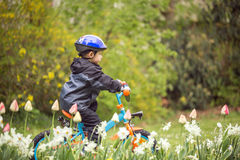 Child on bike in park Royalty Free Stock Photos