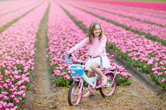 Child on bike in tulip field. Bicycle in Holland. Child riding bike in tulip flower field during family spring vacation in Holland. Kid cycling in pink tulips stock photo