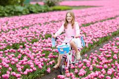Child on bike in tulip field. Bicycle in Holland. Child riding bike in tulip flower field during family spring vacation in Holland. Kid cycling in pink tulips royalty free stock photos