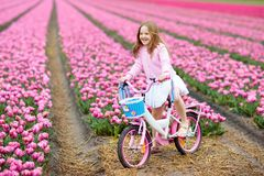 Child on bike in tulip field. Bicycle in Holland. Child riding bike in tulip flower field during family spring vacation in Holland. Kid cycling in pink tulips stock photography