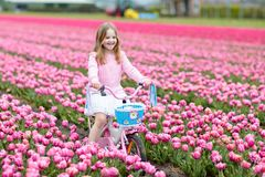 Child on bike in tulip field. Bicycle in Holland. Child riding bike in tulip flower field during family spring vacation in Holland. Kid cycling in pink tulips royalty free stock images