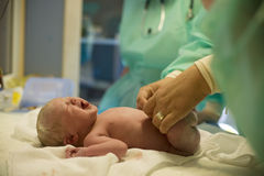 Child after birth. Little child immidetly after birth royalty free stock photos