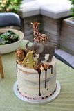 Child birthday cake with toy african animals topping with drizzled chocolate sauce on white icingwit. Fun children's birthday cake with large toy african stock image