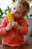 Child biting corn. Child biting cob corn in a restaurant stock photos