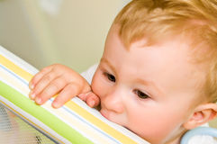 Child biting playpen rail Royalty Free Stock Photos
