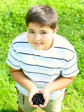 Child with  blackberry in hands. Child with a blackberry in hands Royalty Free Stock Photo