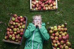Child blond boy lying on the green grass with apples background, holding, eating and biting apple Royalty Free Stock Photos