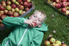Child blond boy lying on the green grass with apples background, holding, eating and biting apple Stock Photography