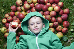 Child blond boy lying on the green grass with apples background, holding, eating and biting apple Royalty Free Stock Image