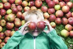 Child blond boy lying on the green grass background with apples glasses Stock Image