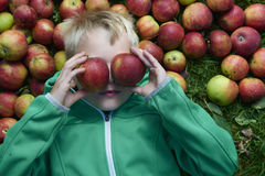 Child blond boy lying on the green grass background with apples glasses Stock Photos