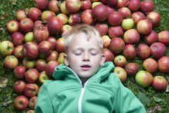Child blond boy lying - resting on the green grass background with pile of apples Royalty Free Stock Images