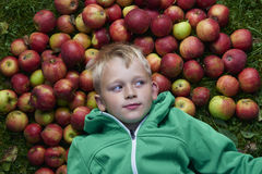 Child blond boy lying - resting on the green grass background with pile of apples Royalty Free Stock Photos