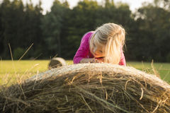 Child blond Girl by straw hay bale in field Royalty Free Stock Image
