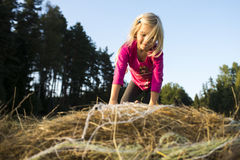 Child blond Girl by straw hay bale in field Royalty Free Stock Photography