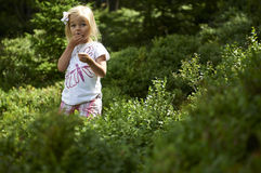 Child blond little girl picking fresh berries on blueberry field in forest. Child pick blue berry in the woods. Little girl playing outdoors. Summer family fun Stock Photo