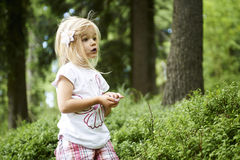 Child blond little girl picking fresh berries on blueberry field in forest. Royalty Free Stock Photo