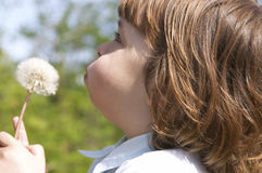 Child and blow-ball Stock Photo