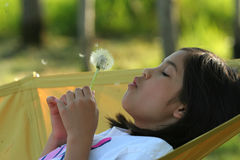 Free Child Blowing Dandelion Royalty Free Stock Photos - 5608868