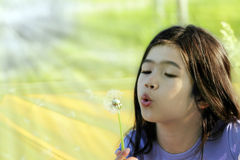 Child blowing dandelion Royalty Free Stock Photos