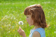 Child blowing dandelion Royalty Free Stock Photo