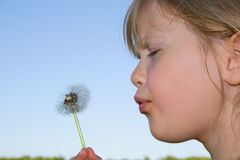 Free Child Blowing Dandelion. Stock Photos - 9996383