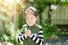 Child blowing a dandelion in a park. royalty free stock photos