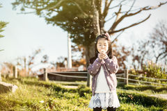 The child blowing a dandelion in a park. stock photo